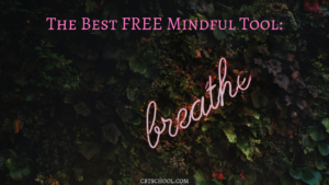 The Best Free Mindful Tool Anxiety Depression Obsessive Compulsive Disorder OCD Specific Phobias Eating Disorder BFRB's CBT Your Anxiety Toolkit Podcast Kimberley Quinlan