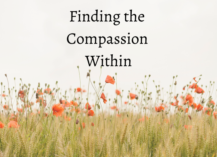 How to Access Your Compassionate Voice Your Anxiety Toolkit Podcast Kimberley Quinlan