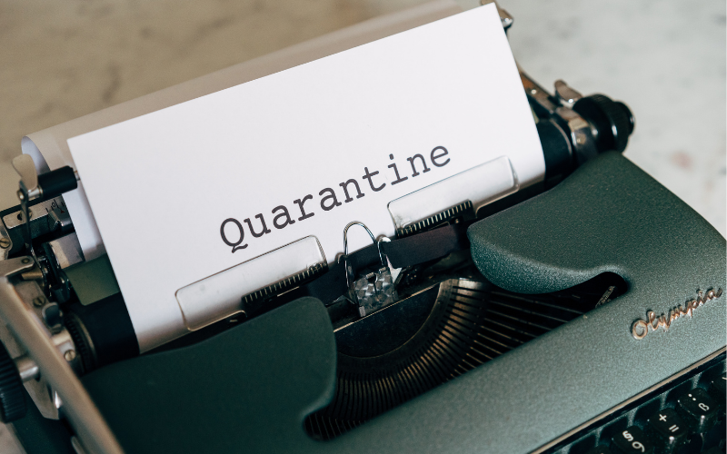 skills to get through quarantine